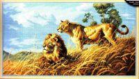 African Lions 03866 - Африканские львы